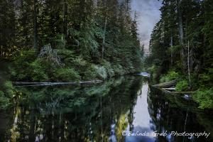 Musings with Camera In Hand - October 5, 2014